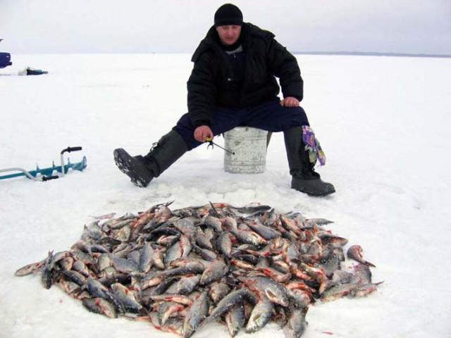 ютуб видео какая рыба клюет на грабака